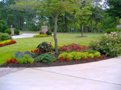 Image of residential landscaping